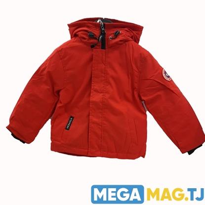 Изображение Детская зимняя куртка Moncelr