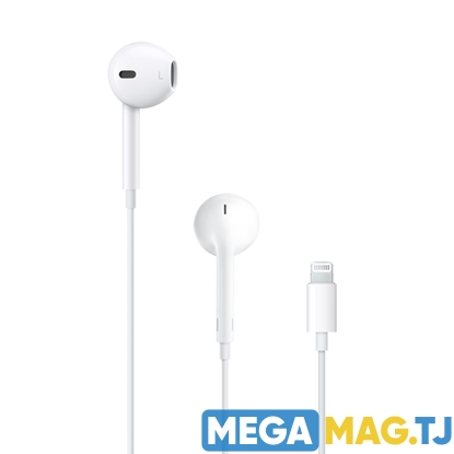 Изображение EarPods с разъёмом Lightning (Dubai version)